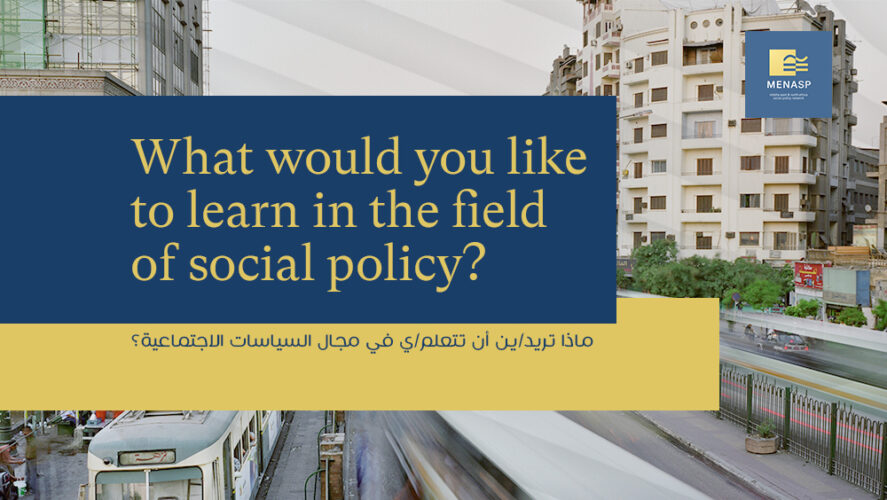 Survey: Give your opinion on developing an e-learning course about social protection and conflict prevention in the Middle East and North Africa region